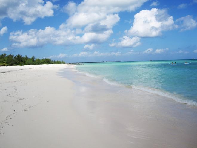 Isla Pasión | TheLuxicon.co