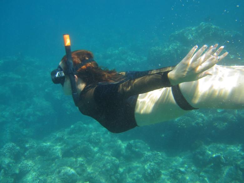 Kauai Snorkel